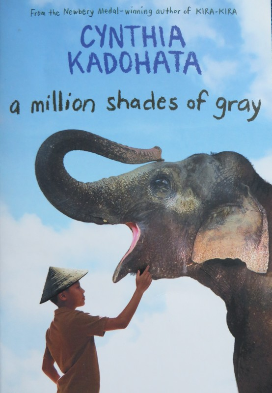 A Million Shades of Gray book cover