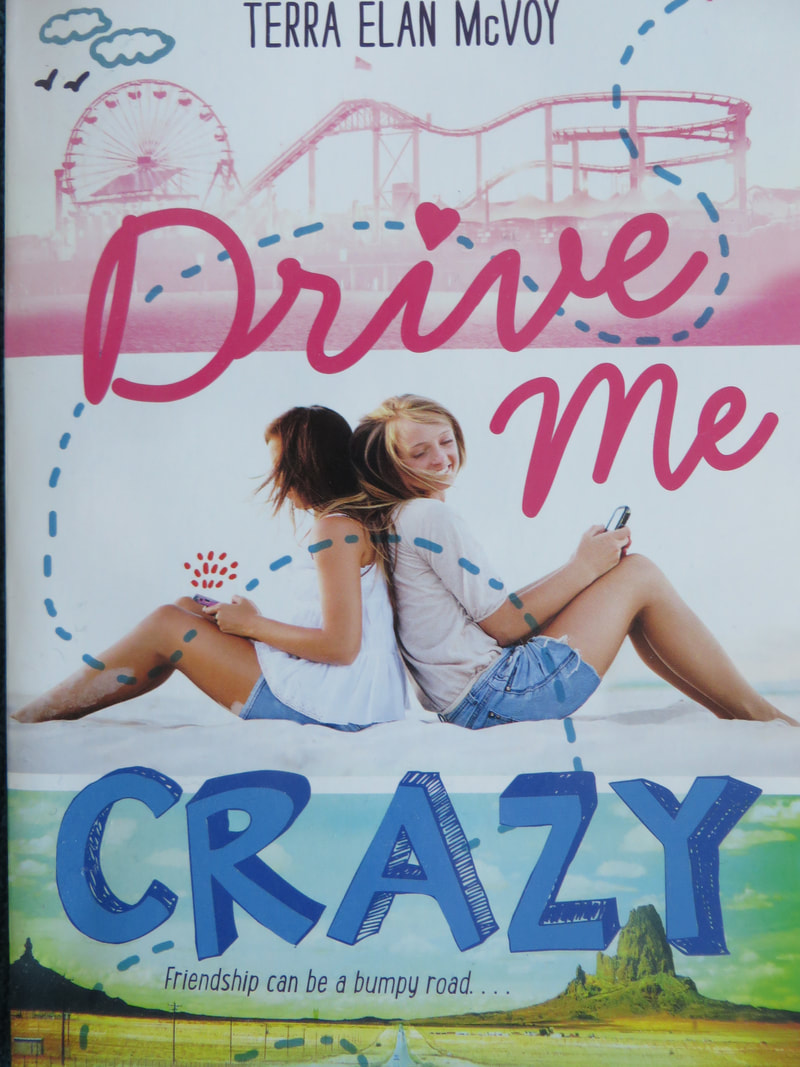 Drive Me Crazy book cover