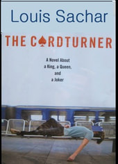 The Cardturner book cover