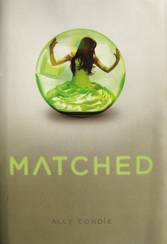Matched Trilogy - Ideas for Learners