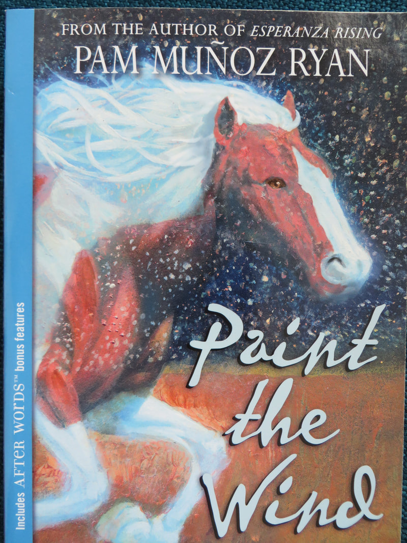 Paint the Wind book cover